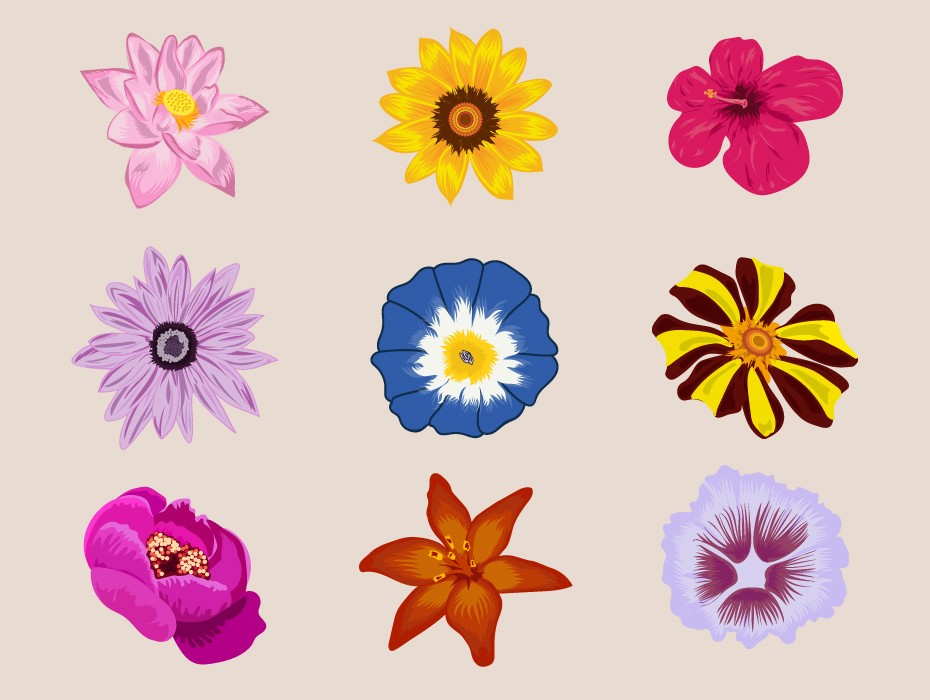 Free Flowers Vector Download